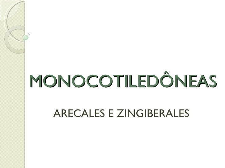 MONOCOTILEDÔNEAS ARECALES E ZINGIBERALES