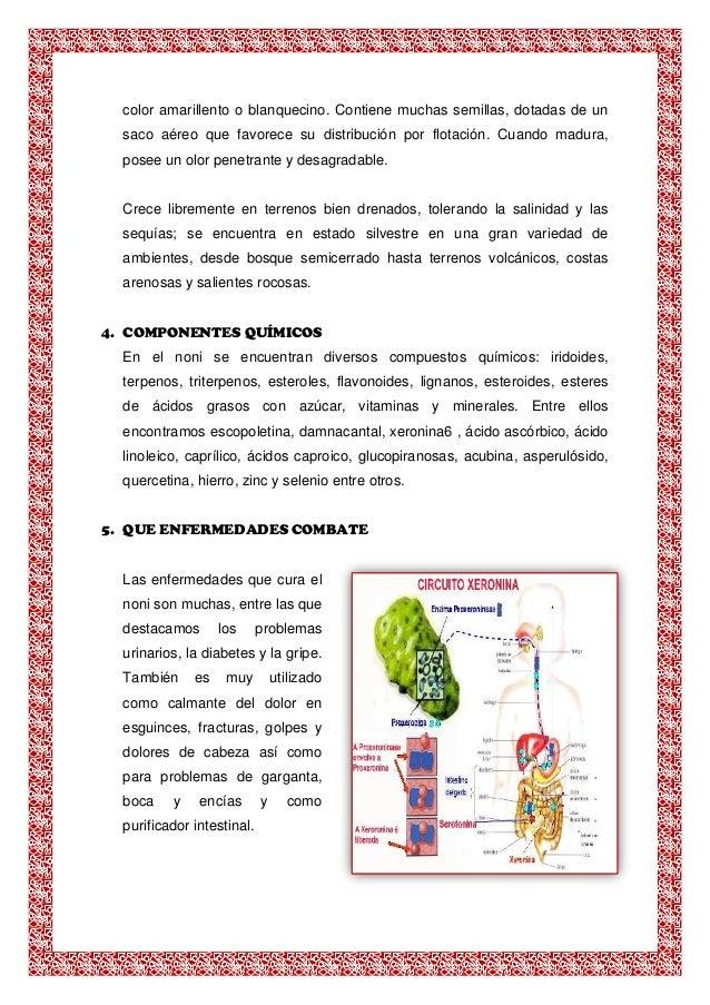 triterpenos y esteroides