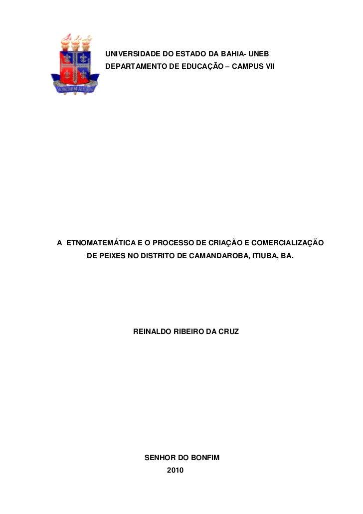UNIVERSIDADE DO ESTADO DA BAHIA- UNEB          DEPARTAMENTO DE EDUCAÇÃO – CAMPUS VIIA ETNOMATEMÁTICA E O PROCESSO DE CRIAÇ...