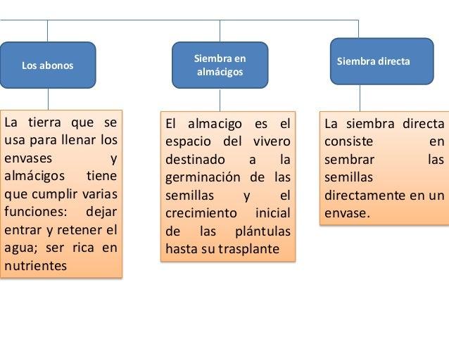 Monografia la reforestacion for Vivero definicion