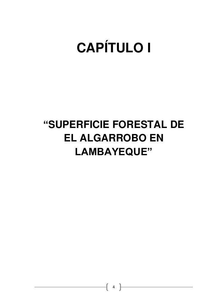 """CAPÍTULO I""""SUPERFICIE FORESTAL DE   EL ALGARROBO EN     LAMBAYEQUE""""           4"""