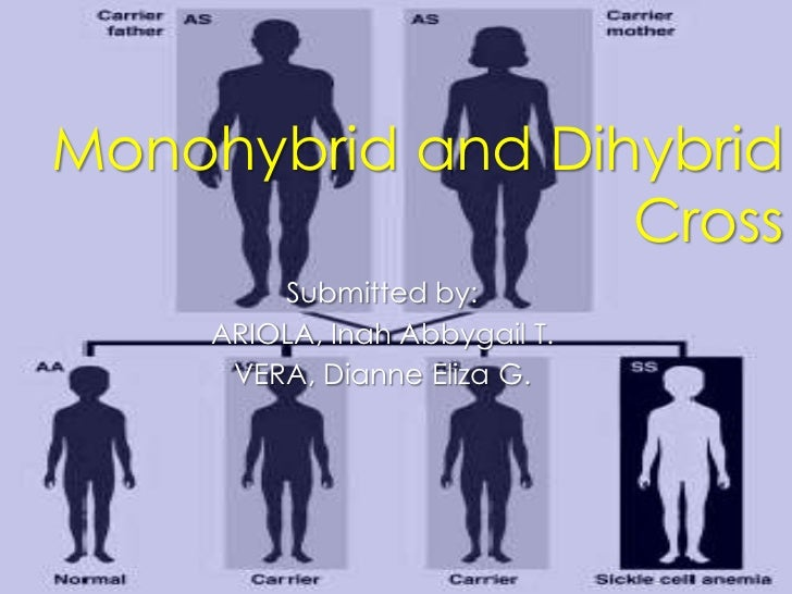 Monohybrid and Dihybrid                  Cross         Submitted by:     ARIOLA, Inah Abbygail T.      VERA, Dianne Eliza G.