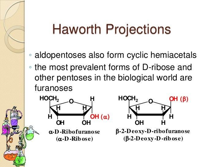 monosaccharides2