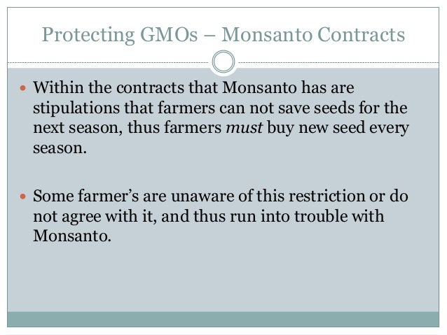 Protecting GMOs – Monsanto Contracts Within the contracts that Monsanto has are stipulations that farmers can not save se...