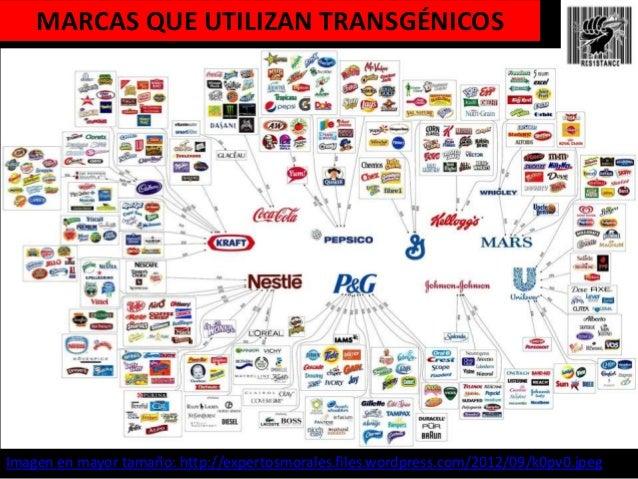 Resultado de imagen para marcas comerciales que usan productos monsanto en chile