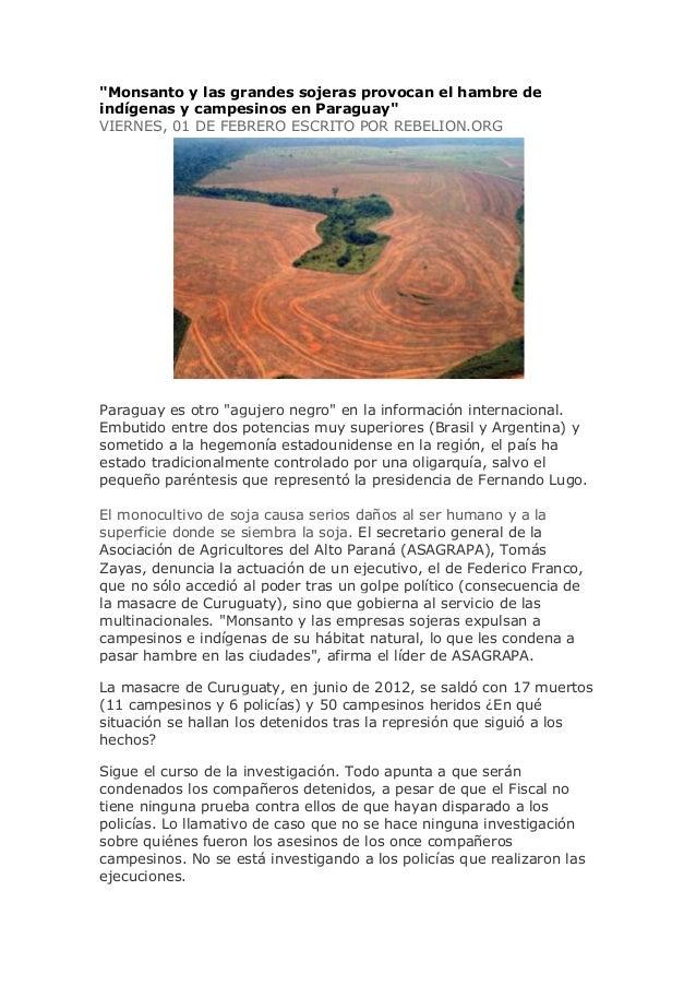 """""""Monsanto y las grandes sojeras provocan el hambre deindígenas y campesinos en Paraguay""""VIERNES, 01 DE FEBRERO ESCRITO POR..."""