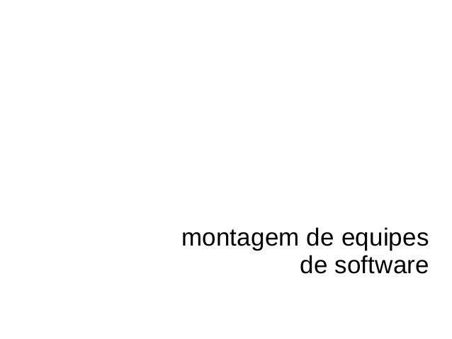 montagem de equipes de software