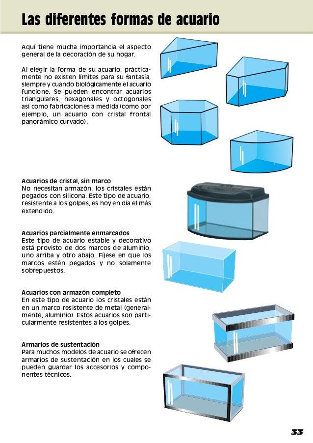 Montaje y decoracion del acuario manual 2