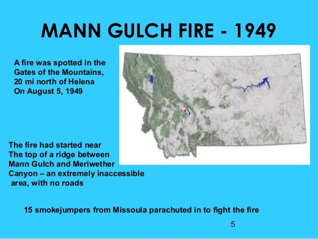 discussion questions of the mann gulch disaster case The collapse of sensemaking in organizations: the mann gulch disaster  argued the forest service's case (p 151) since mann gulch, there have been no deaths by.