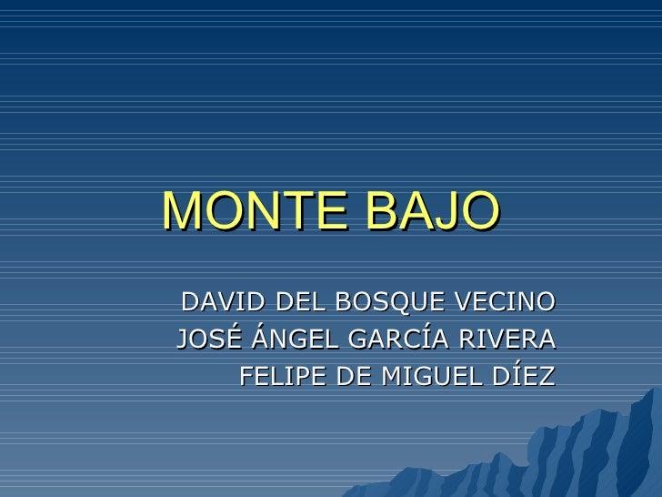 MONTE BAJO DAVID DEL BOSQUE VECINO JOSÉ ÁNGEL GARCÍA RIVERA FELIPE DE MIGUEL DÍEZ