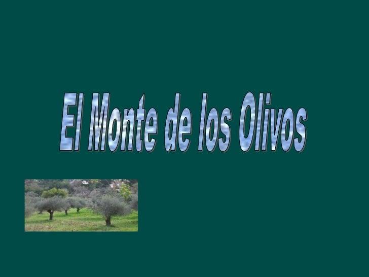 El Monte de los Olivos es un cerro que cada uno está asociado con las religionesjudía y cristiana.Desde los tiempos bíblic...