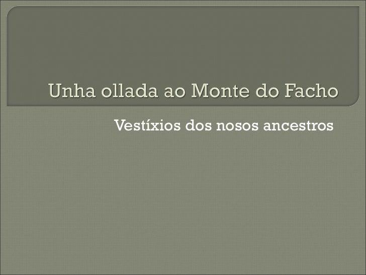 Vestíxios dos nosos ancestros