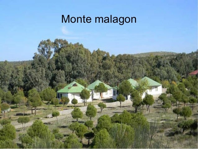 Monte malagon