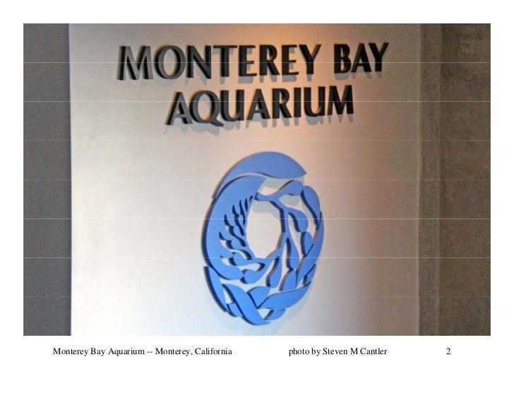 Monterey Bay Aquarium -- Monterey, California   photo by Steven M Cantler   2