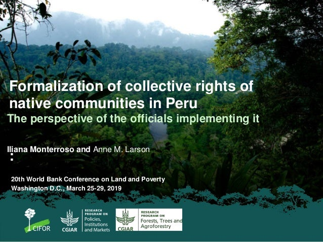 Formalization of collective rights of native communities in Peru : The perspective of the officials implementing it Iliana...