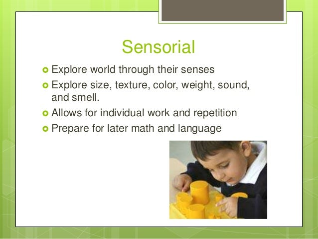 Sensorial  Explore  world through their senses  Explore size, texture, color, weight, sound, and smell.  Allows for ind...