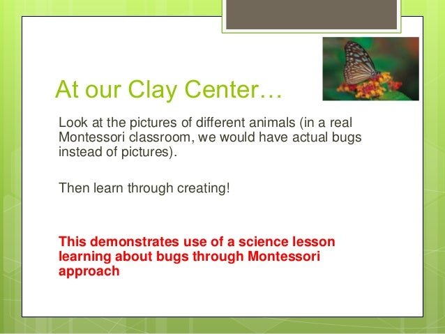 At our Clay Center… Look at the pictures of different animals (in a real Montessori classroom, we would have actual bugs i...