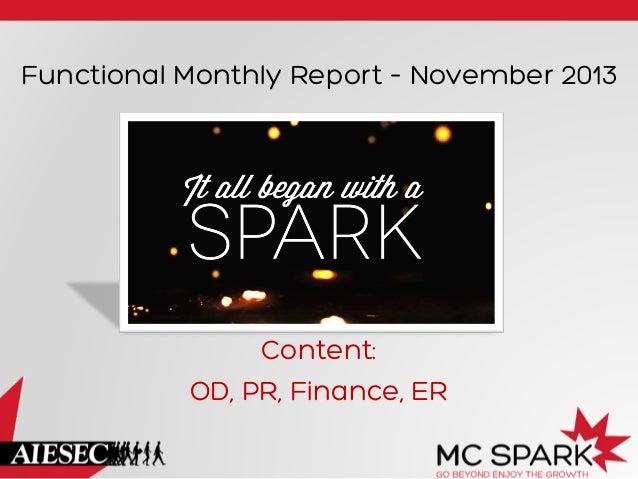 Functional Monthly Report – November 2013  Content: OD, PR, Finance, ER