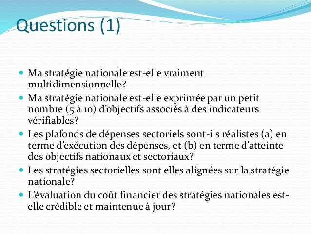 Questions (1)  Ma stratégie nationale est-elle vraiment multidimensionnelle?  Ma stratégie nationale est-elle exprimée p...