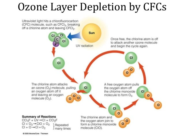 cfcs cause deterioration of the ozone The theory about ozone depletion was first put forward in 1974 by american scientists mario molina and f sherwood rowland they were concerned about the impact of cfcs on the ozone layer their hypothesis was met with a great deal of scepticism, but scientific work over the next 20 years proved.