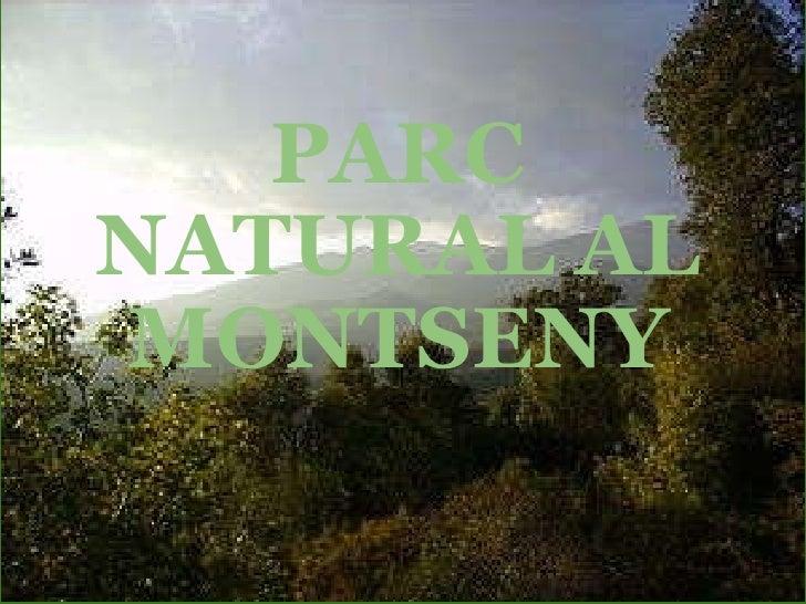 PARC NATURAL AL MONTSENY