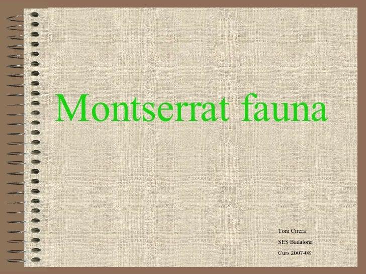 Montserrat fauna Toni Cirera SES Badalona Curs 2007-08