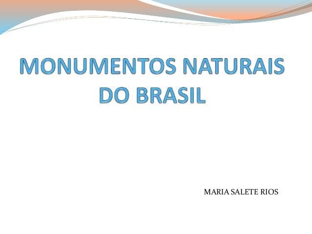 MARIA SALETE RIOS