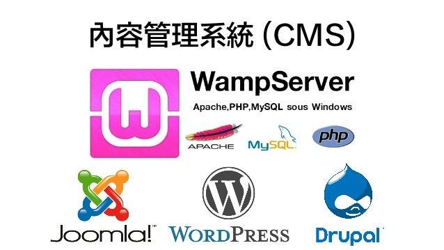 內容管理系統 (CMS)