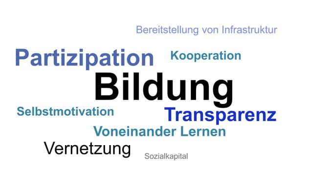Partizipation  Kooperation  Bildung  Selbstmotivation Transparenz  Vernetzung  Bereitstellung von Infrastruktur  Voneinand...