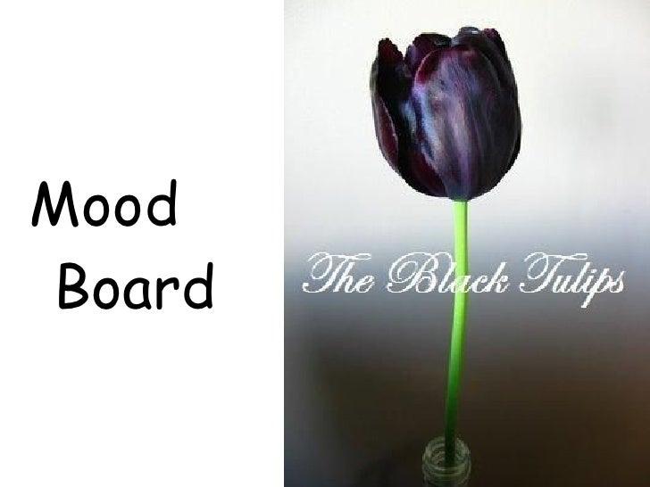 <ul><li>Mood Board </li></ul>