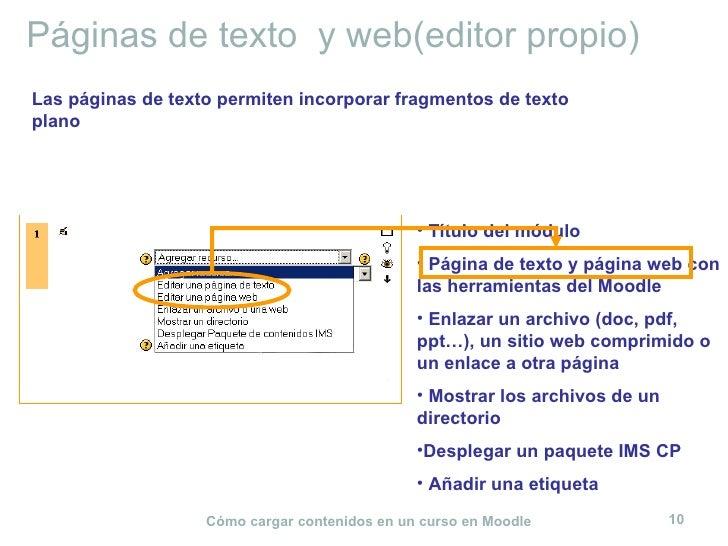 Páginas de texto  y web(editor propio) <ul><li>Título del módulo </li></ul><ul><li>Página de texto y página web con las he...