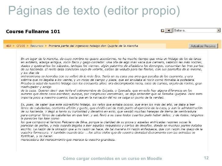 Páginas de texto (editor propio)