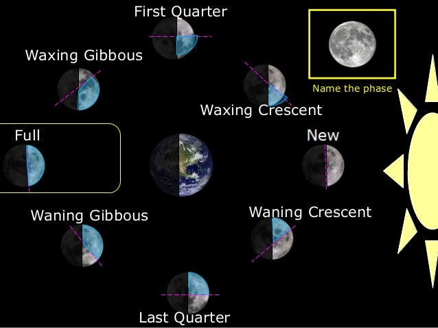 Moon phases of the moon oreo cookie activity lesson powerpoint oreo cookie activity lesson powerpoint waxing crescent first quarter waxing gibbous full waning gibbous last quarter waning crescent name the phase freerunsca Image collections