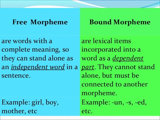 Bound morphemes operates in the connection processes by means of : Derivation Inflection Compounding