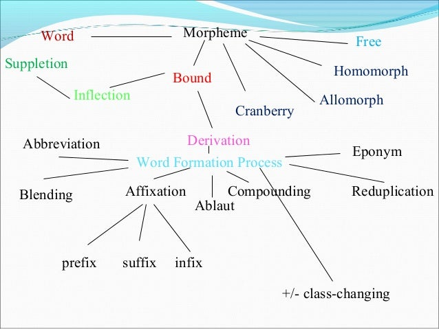 How many morphemes in the following words can you see? Oversimplification Ungraciously Interpersonal Alphabetically A...