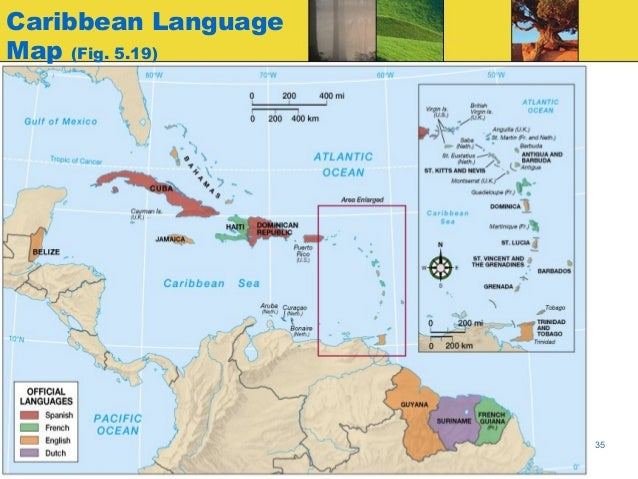 creolization creole language and caribbean His discours antillais (caribbean discourse) discusses not only the role of creole language in the caribbean, but its complex and problematic political situation.