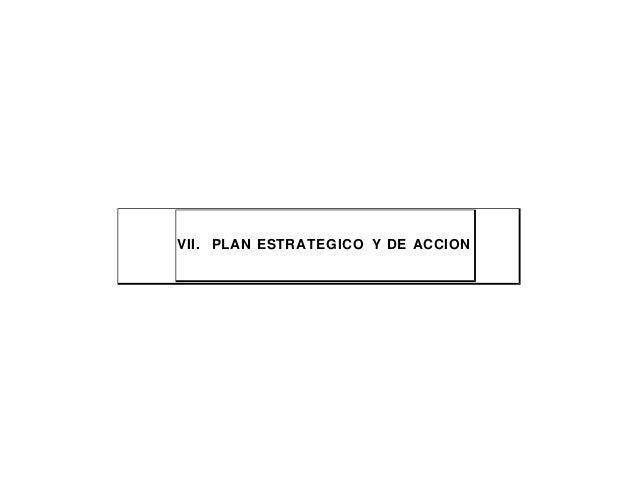 VII. PLAN ESTRATEGICO Y DE ACCION