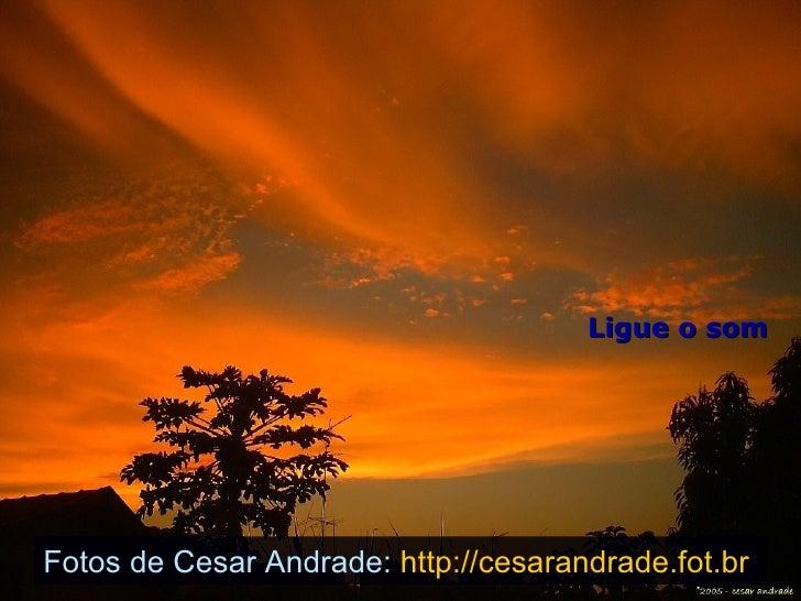 Ligue o som Fotos de Cesar Andrade:  http://cesarandrade.fot.br