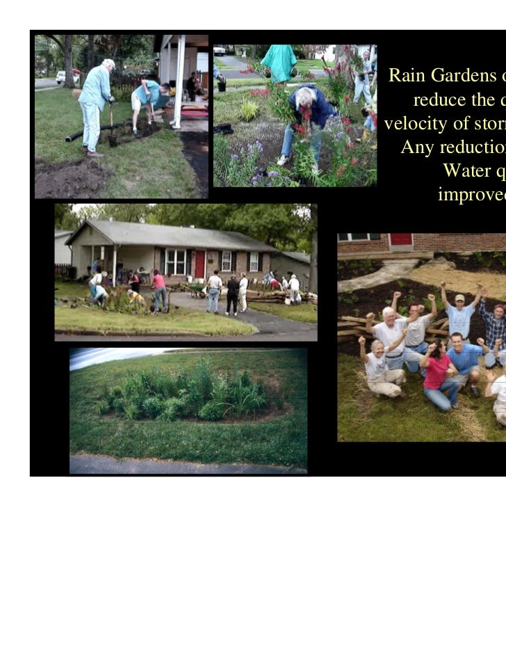 Mo Rain Gardens Sustainable Solutions For Storm Water