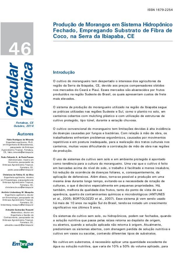 Circular  Técnica  ISSN 1679-2254  Fortaleza, CE  Outubro, 2014  46  Produção de Morangos em Sistema Hidropônico Fechado, ...