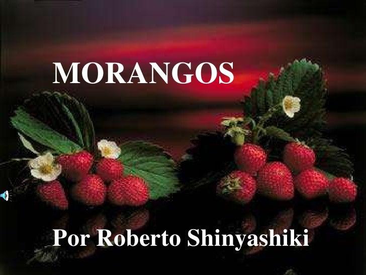 MORANGOS<br />Por Roberto Shinyashiki<br />
