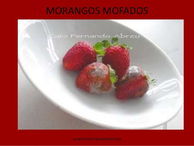 MORANGOS MOFADOS    GUIADELITERATURA.BLOGSPOT.COM