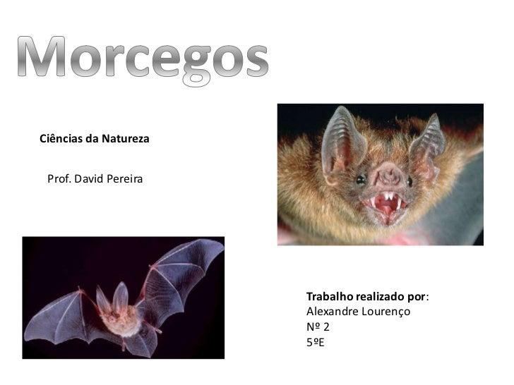 Ciências da Natureza Prof. David Pereira                       Trabalho realizado por:                       Alexandre Lou...