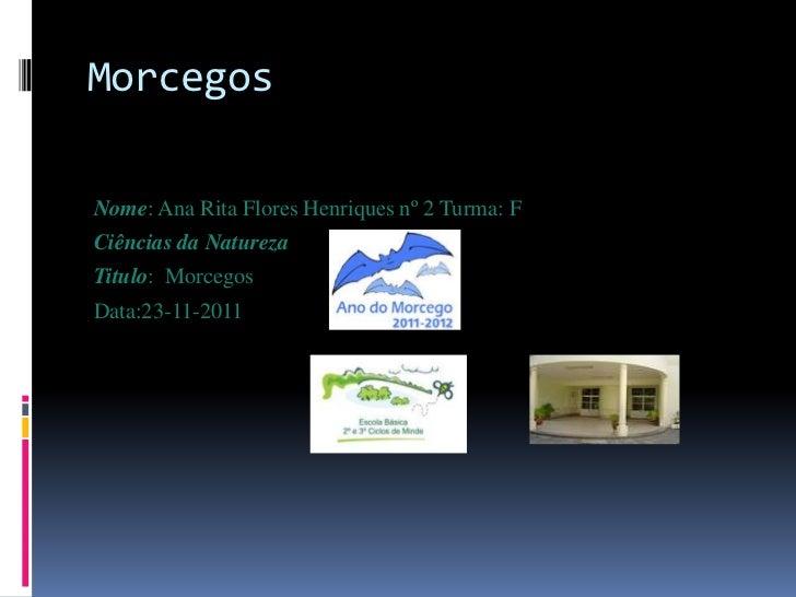 MorcegosNome: Ana Rita Flores Henriques nº 2 Turma: FCiências da NaturezaTitulo: MorcegosData:23-11-2011