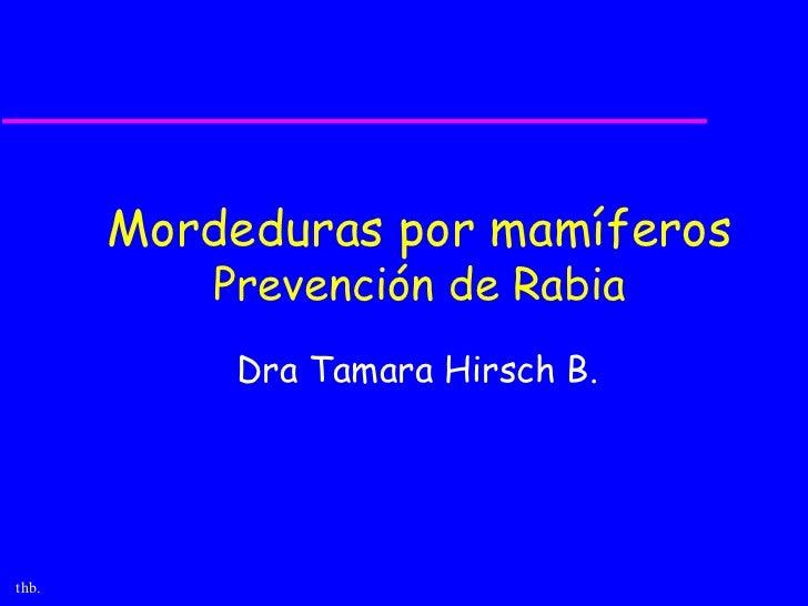 Mordeduras por mamíferos           Prevención de Rabia            Dra Tamara Hirsch B.thb.