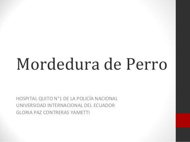 Mordedura de PerroHOSPITAL QUITO N°1 DE LA POLICÍA NACIONALUNIVERSIDAD INTERNACIONAL DEL ECUADORGLORIA PAZ CONTRERAS YAMETTI