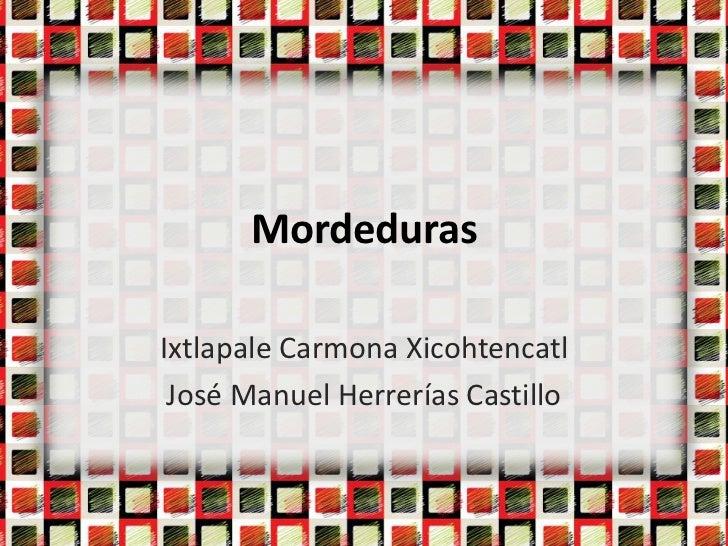 MordedurasIxtlapale Carmona Xicohtencatl José Manuel Herrerías Castillo