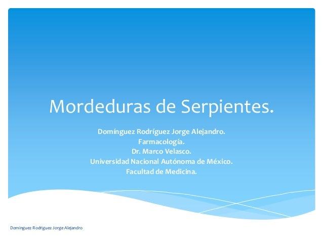Mordeduras de Serpientes.                                        Domínguez Rodríguez Jorge Alejandro.                     ...