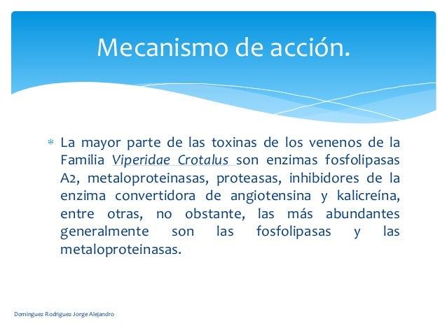 Mecanismo de acción.                La mayor parte de las toxinas de los venenos de la                Familia Viperidae Cr...