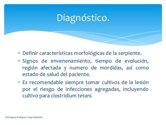 Diagnóstico.                Definir características morfológicas de la serpiente.                Signos de envenenamiento,...